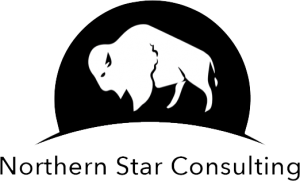northern star consulting logo