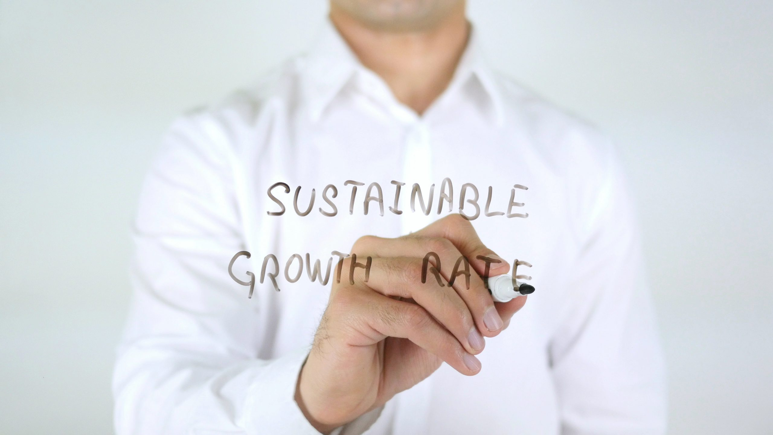 sustainable business growth is key to any successful organization
