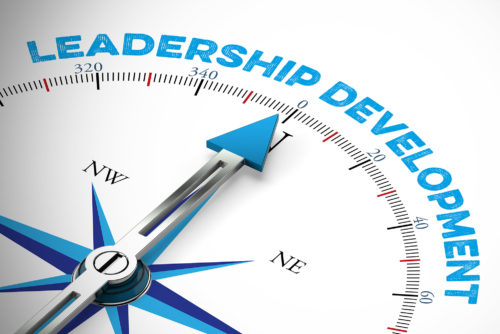 Northern Star Consulting Leadership Development Classes